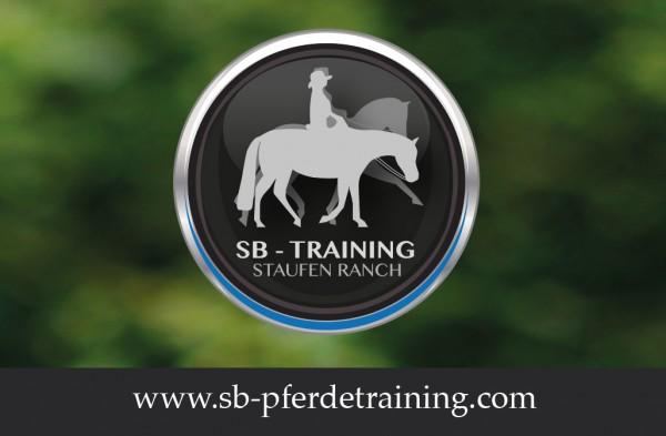 Stella Breitling Pferdetraining